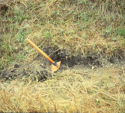 Outcrop of Lacustine Clay Used to Manufacture Arretine Terra Sigillata, Arezzo-Quarata (Italy)